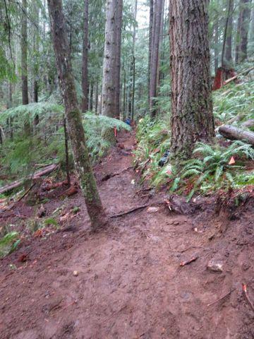 Trailschoolfinishedtrail