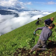 Volunteers at Alpine Baldy