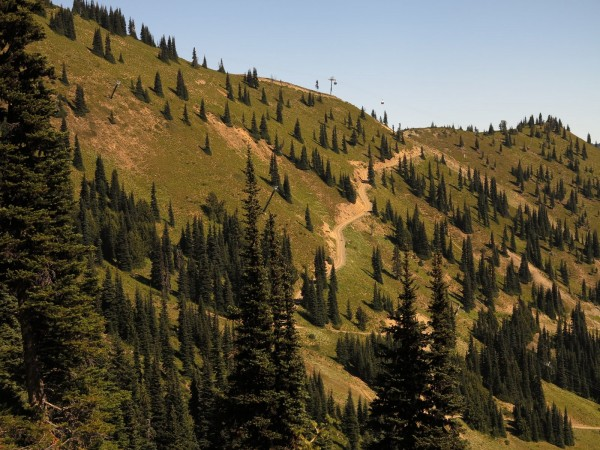 The detour road - you will leave the road at the swtchback(hidden by trees) and climb to Powder Bowl